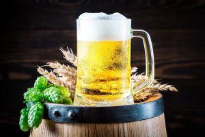 Guía rápida para cerveceros: Conoce los tipos de cerveza y tips infalibles para disfrutarla