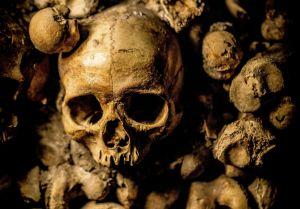 Encuentra el presunto esqueleto de su hermano desaparecido al limpiar su habitación