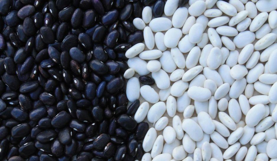 Qué alimentos son más ricos en hierro