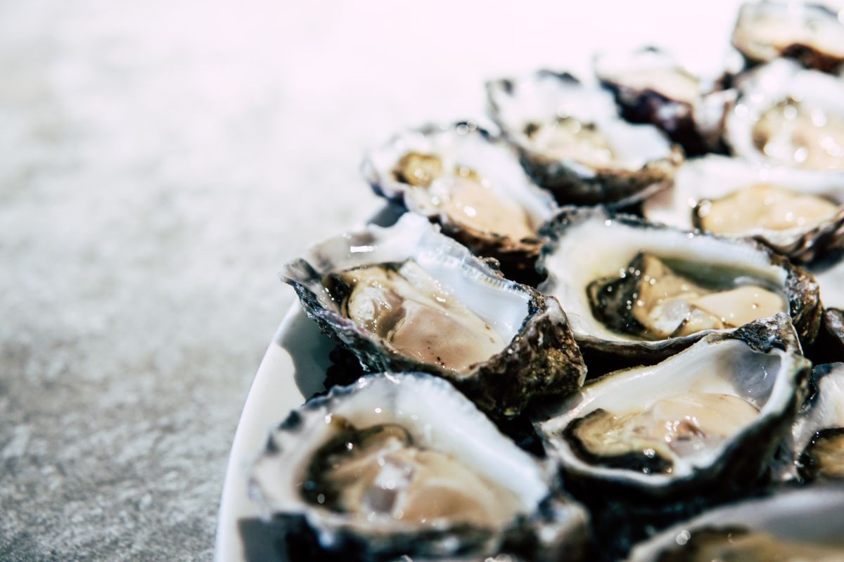 12 curiosidades de las ostras