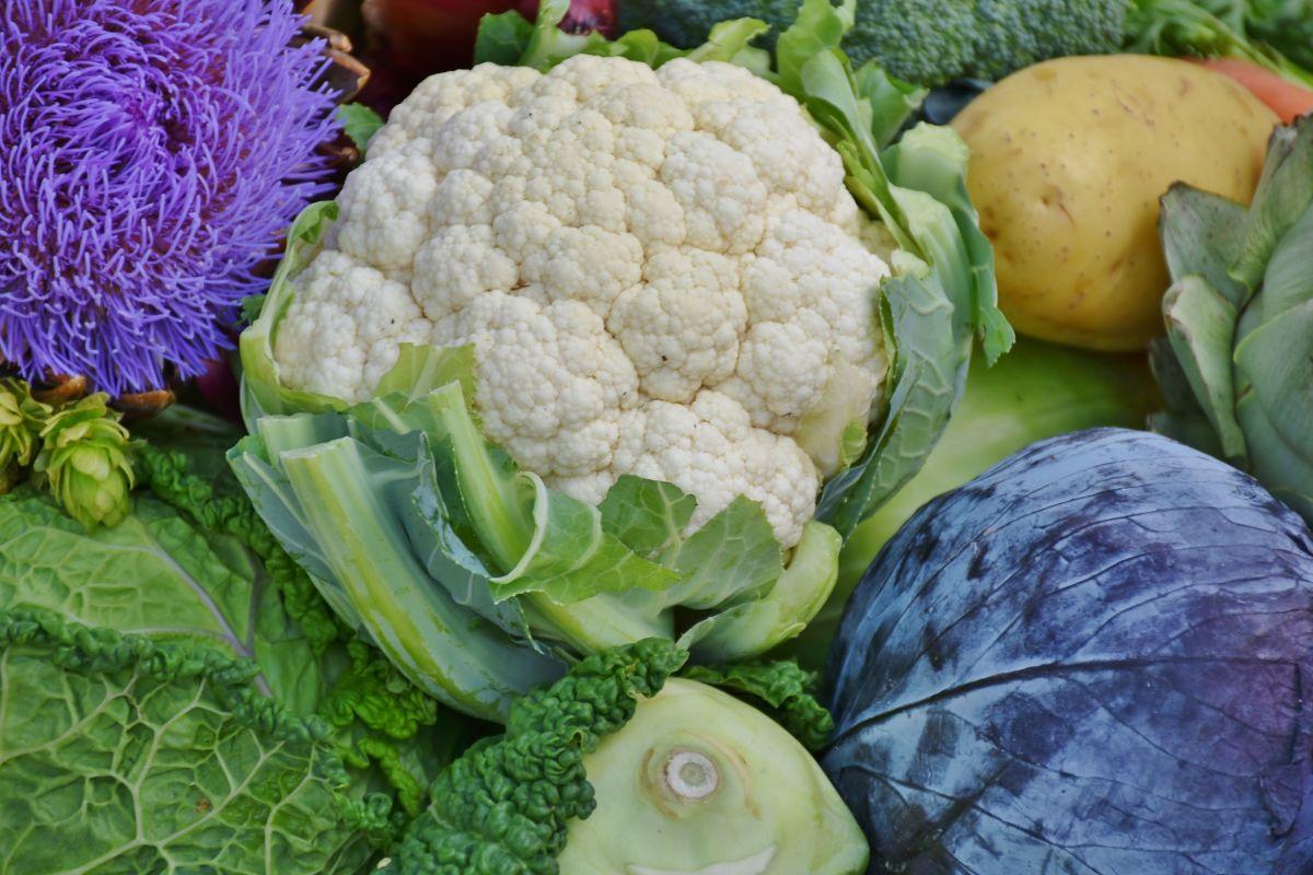Qué son los vegetales crucíferos y por qué son fundamentales para prevenir el cáncer