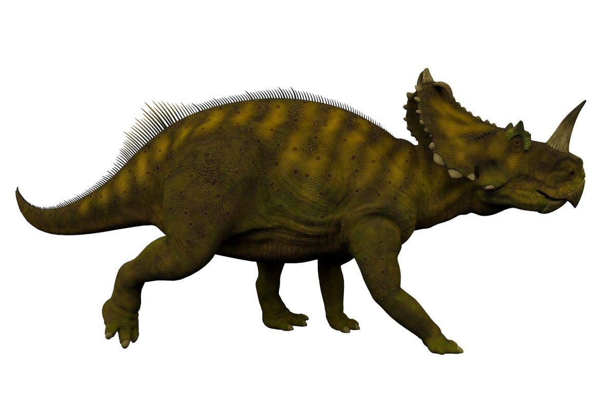 Un cáncer de hueso que hoy sufren los humanos también afectó a los dinosaurios