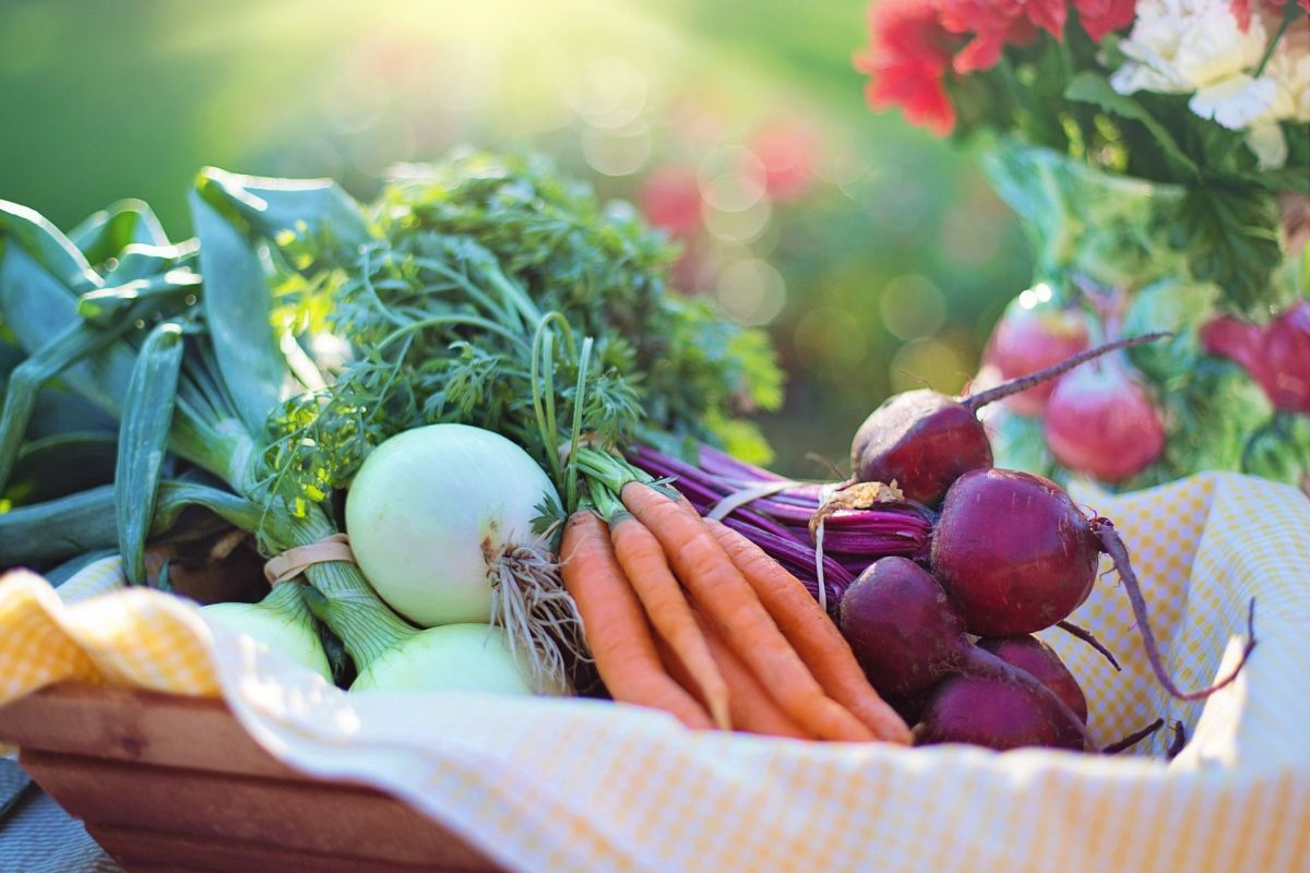 Cómo una dieta vegetariana puede ayudarte a eliminar medicamentos crónicos