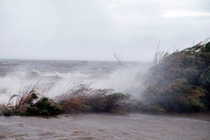 La esperada trayectoria del huracán Sally: pronostican peligrosa marejada ciclónica en costa de Mississippi y Alabama