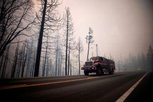 Un bombero dijo a sus jefes que tenía Covid-19 pero en realidad se fue de vacaciones