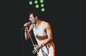 La tierna historia detrás de las últimas dos fotografías que le tomaron a Freddie Mercury en vida