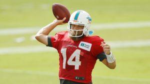 Fitzpatrick será el quarterback titular de Miami Dolphins