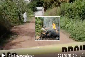 VIDEO: Hallan cuerpos de 2 jovencitas quemadas en tierras del Chapo Guzmán