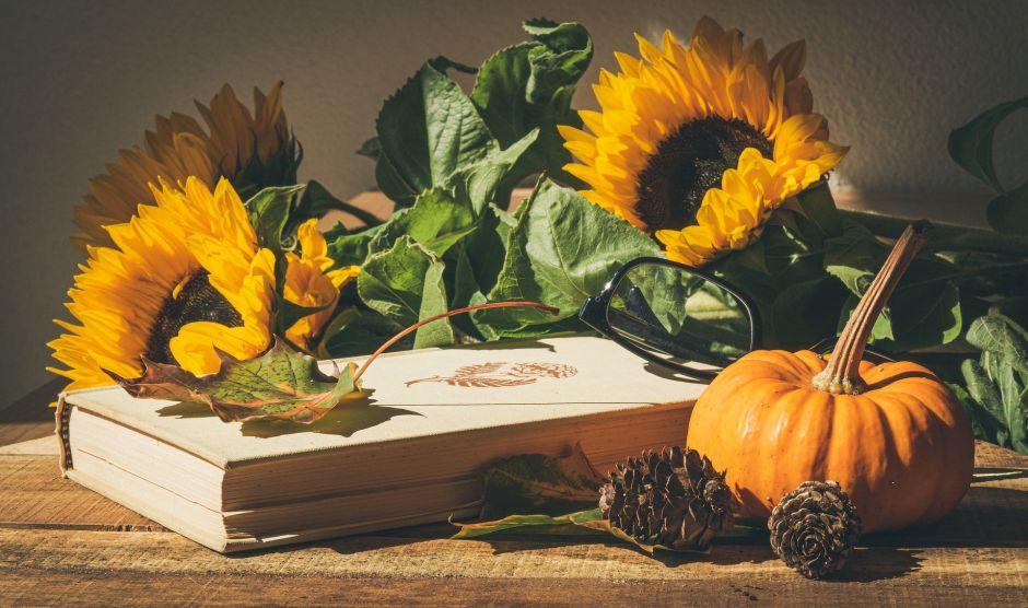 4 alimentos de otoño cargados de betacarotenos y antioxidantes, para proteger tu salud