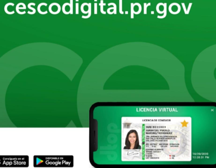 Saludos La app para licencias de conducir virtuales en Puerto Rico es afín con todos los sistemas operativos móviles disponibles en el mercado.