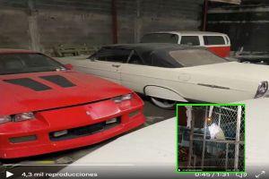 FOTOS: Así son los 46 vehículos de colección y de tigres decomisados a narcos