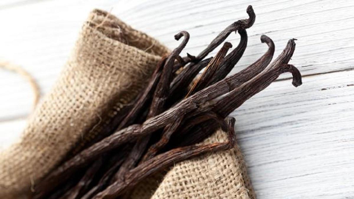 Diferencia entre esencia y extracto de vainilla, ¿cuál es natural y cuál es sintética?