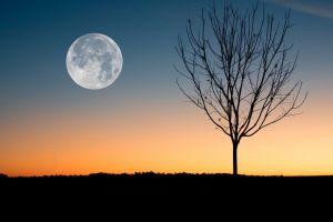 Octubre: El raro mes con dos lunas llenas del año 2020