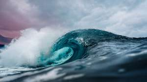 La conmovedora reacción de una anciana al conocer por primera vez el mar