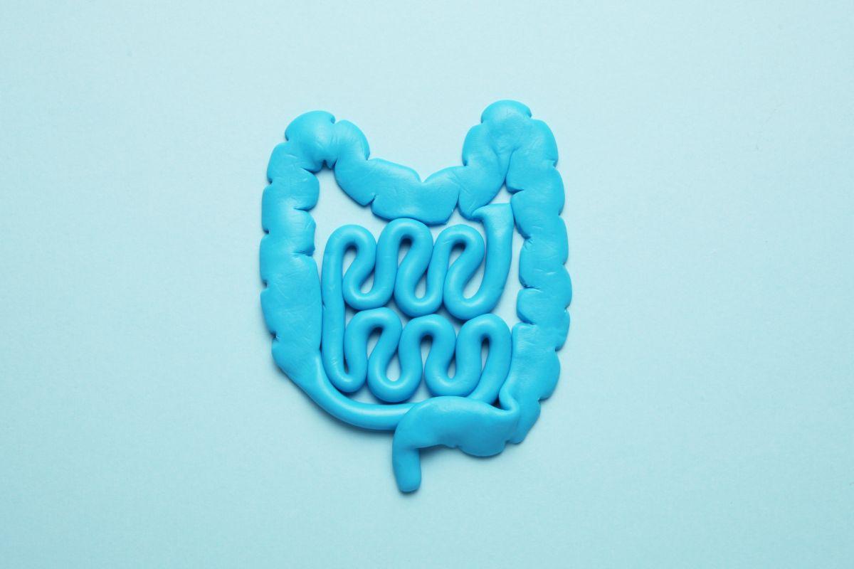 5 señales de que tienes un intestino enfermo y cómo ayudarlo