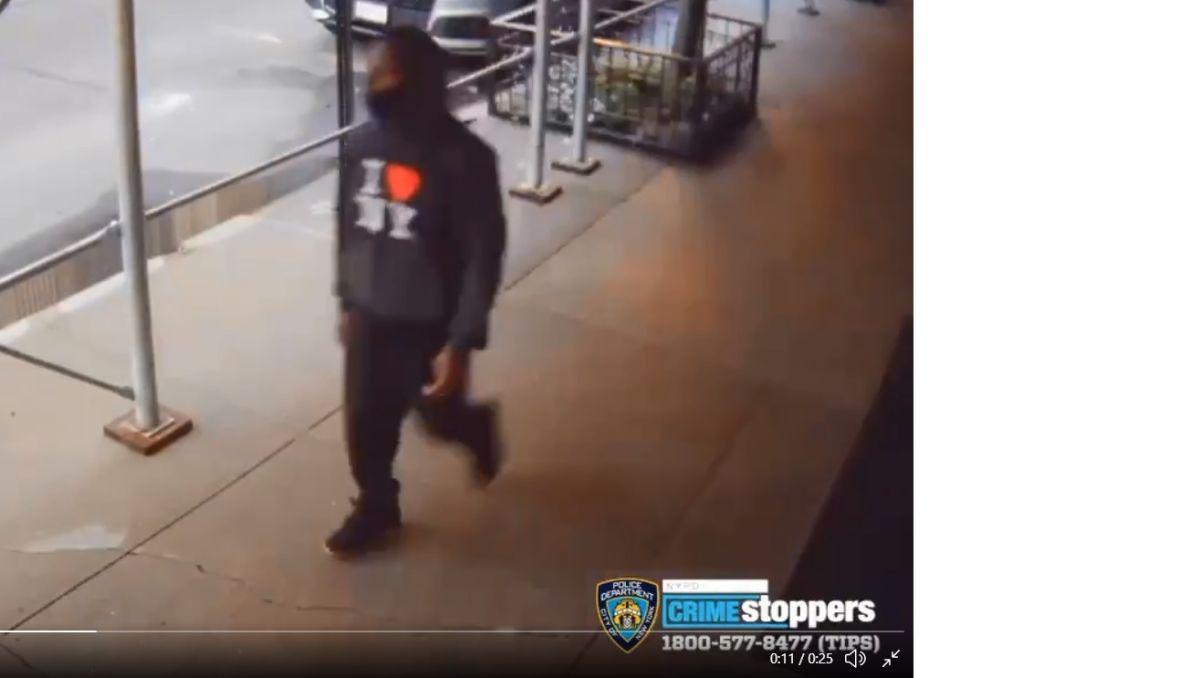 Atacaron en calle de Manhattan a Rick Moranis, actor de Hollywood; NYPD ofrece recompensa por captura