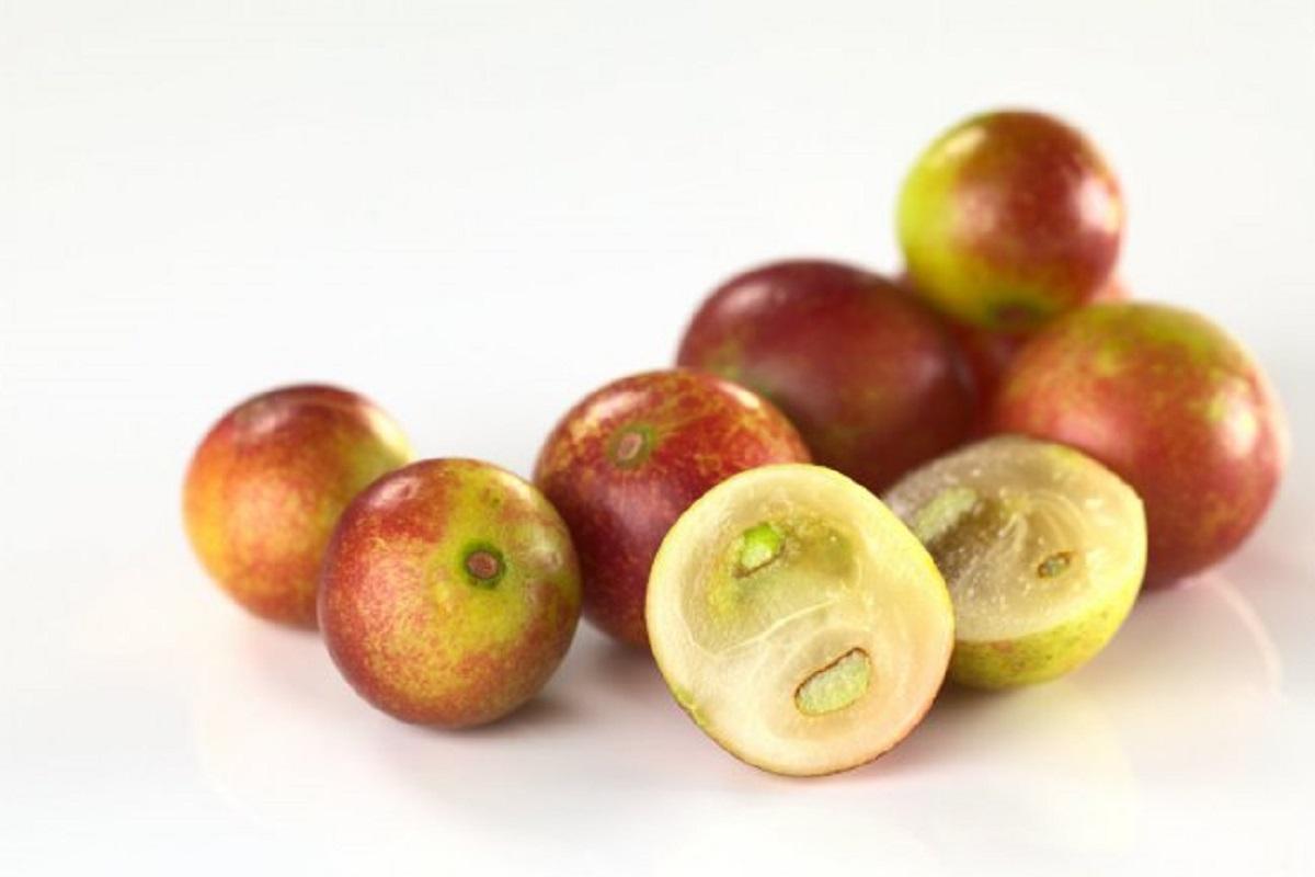 Camu camu: ¿cuáles son los beneficios de esta fruta antiinflamatoria?