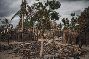 Jihadistas asociados a ISIS decapitan a 50 personas en Mozambique
