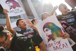 Sentencia a favor de restaurar DACA llena de esperanza a miles de jóvenes inmigrantes