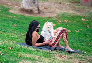 Personas que pasean a sus perros tienen mayor riesgo de enfermar de COVID-19