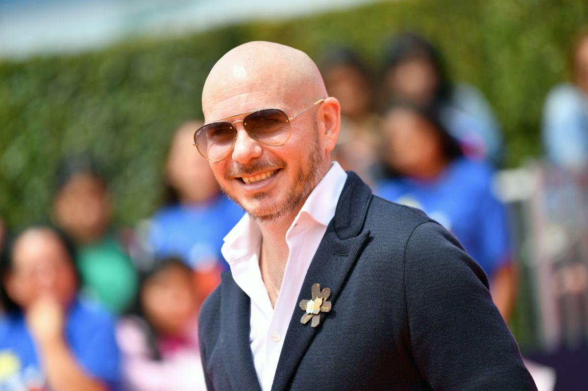 ¿Cuánto dinero tiene Pitbull?