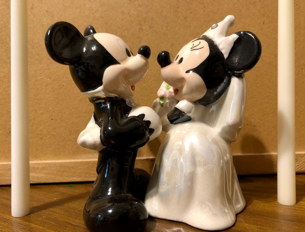 Decide pedirle matrimonio a su novia en Disney World pero ella le tenía un secreto que revelar