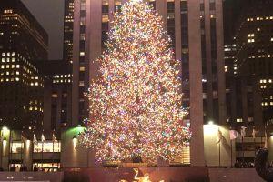 Paciencia, fe y distancia: claves del complicado proceso para ver el árbol navideño en Rockefeller Center 2020