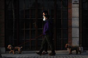 COVID-19 podría no ser la peor pandemia a la que nos enfrentemos, según advierte la OMS