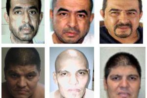 Estados Unidos acusa de terrorismo a líderes de la MS-13 que tienen nexos con cárteles de Sinaloa y Jalisco Nueva Generación