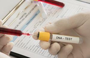 Su padre le regala por Navidad una prueba de ADN y descubre que en realidad es hija de un multimillonario
