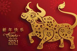 Año Nuevo chino: qué significa el año del buey y cómo se celebra