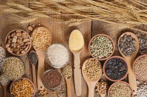 Qué es el fonio y cuáles son los beneficios de este cereal