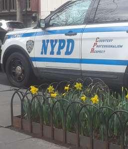 Sujeto estrangula a su mamá en Queens poco antes del Día de las Madres