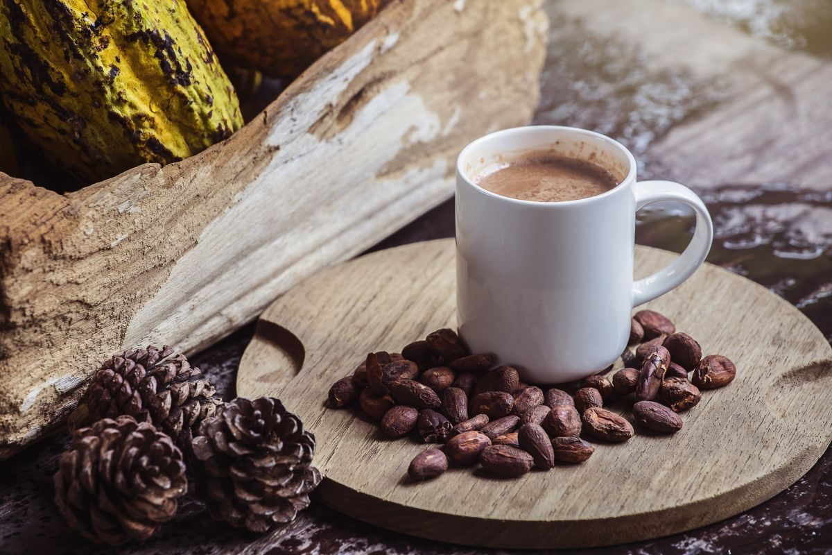 To lose weight, add cocoa powder to your morning coffee