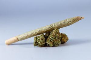 """Qué comer para """"bajar"""": los alimentos que ayudan a disminuir los efectos de la marihuana"""