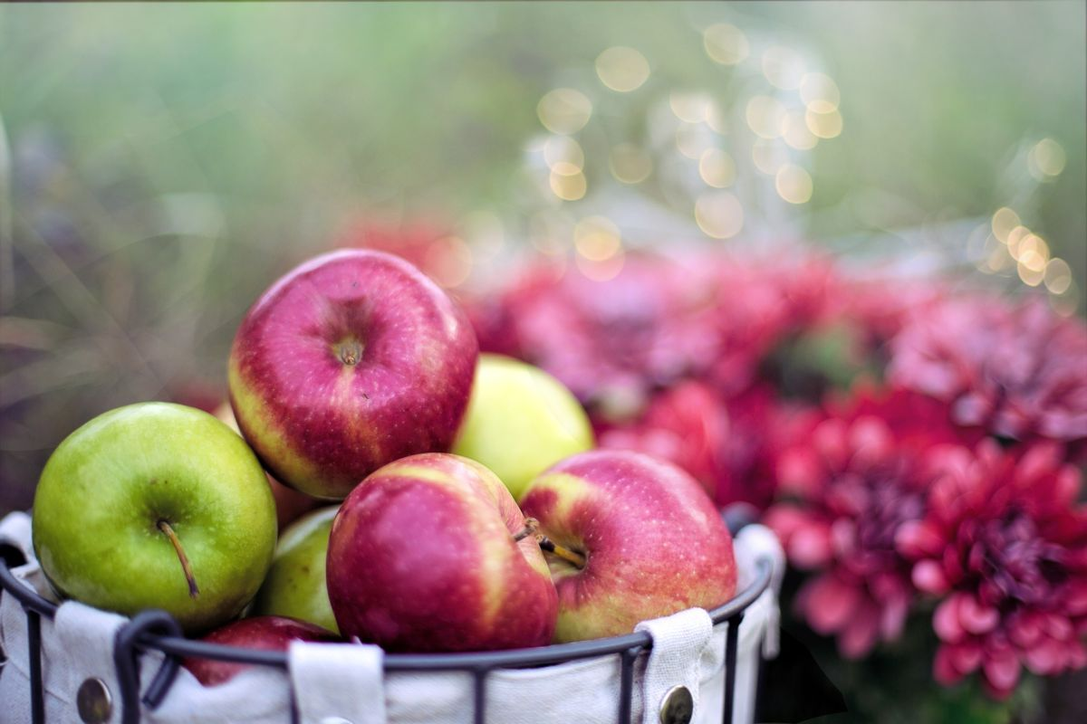 6 ways apples help you lose weight
