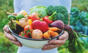 6 trucos para seguir la Dieta Mediterránea con poco presupuesto