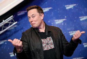 Empresa de Elon Musk exhibe a mono con un chip implantado en el cerebro jugando un videojuego