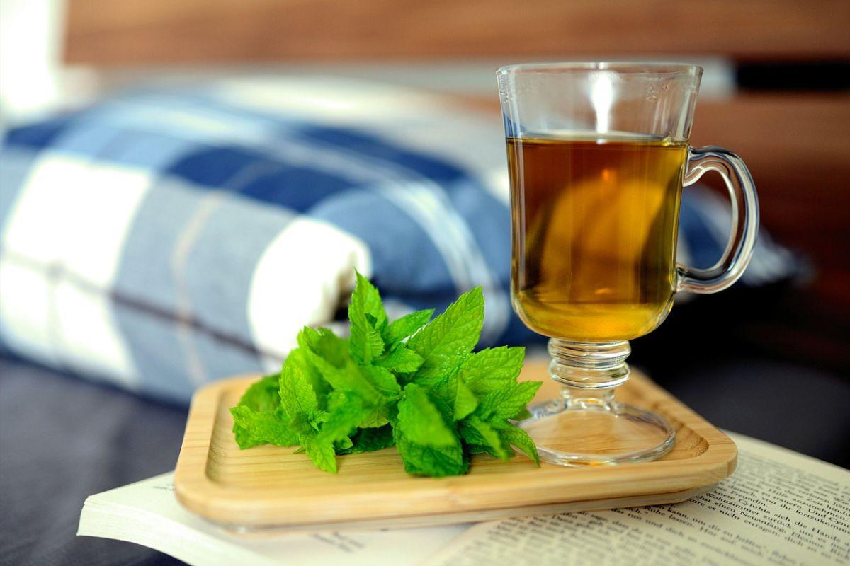 Cómo el té de menta verde puede ayudarte a eliminar los barros