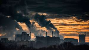 Cambio climático: la mejor solución para combatir el calentamiento global de la que quizás no escuchaste hablar