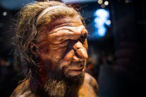 Cómo tenían sexo los neandertales