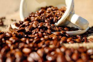 Consejos para almacenar tu café de la mejor forma