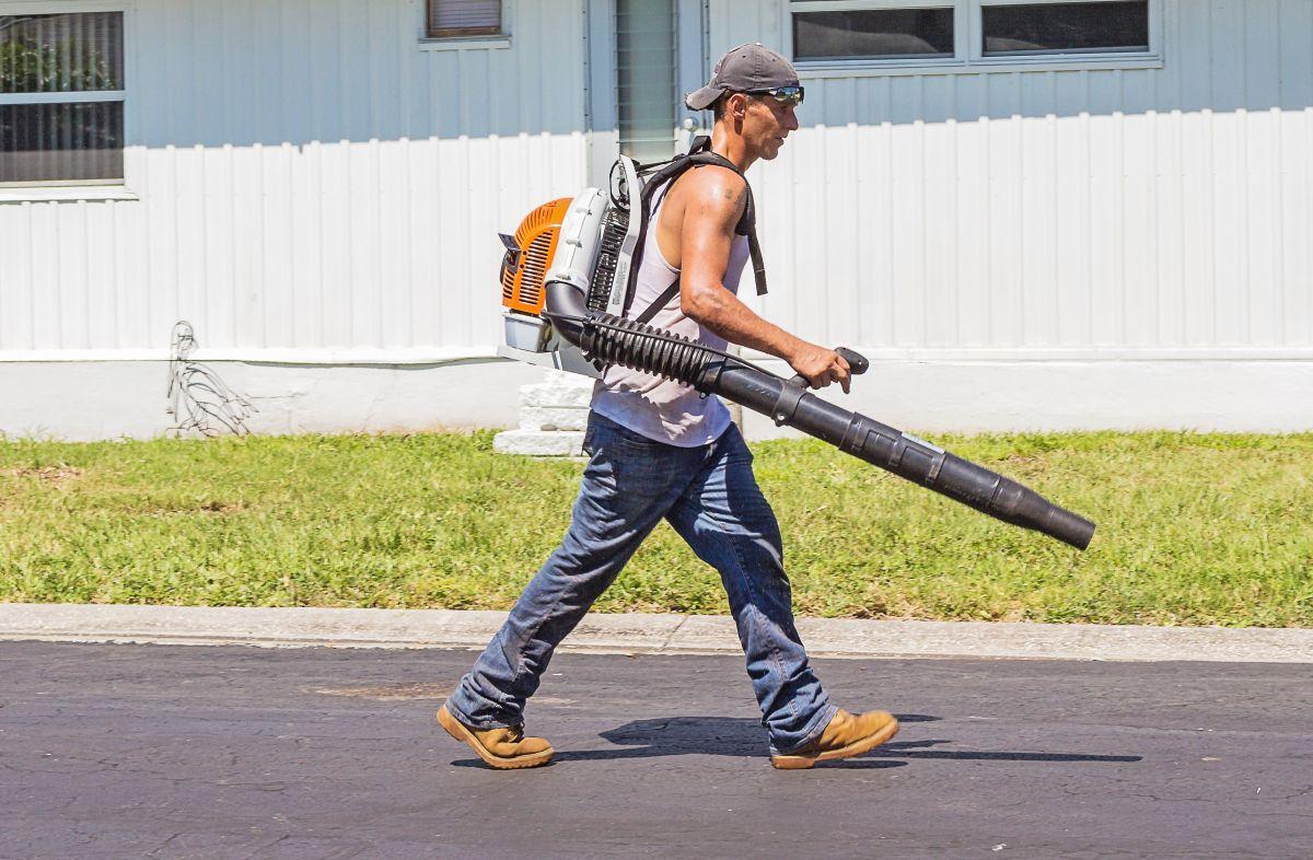 Trabajadores tendrán derecho a la portabilidad para evitar que sufran abusos o maltratos laborales.