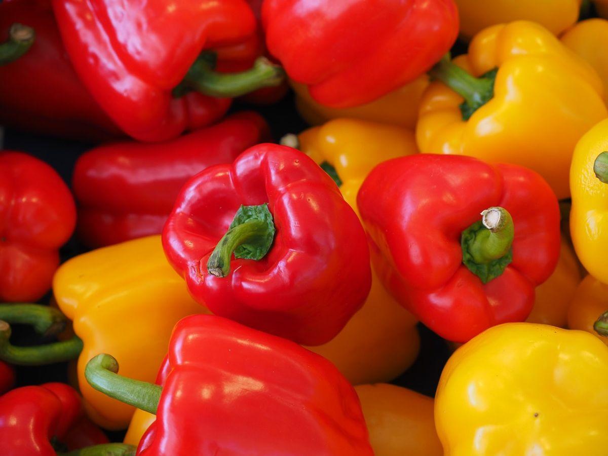 Cuáles son los mayores beneficios para la salud de los pimientos morrones