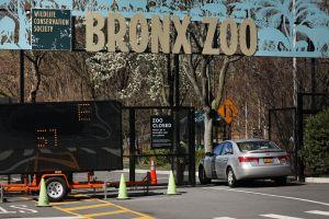 Quien se vacune recibirá tickets gratis para las principales atracciones de la ciudad de Nueva York