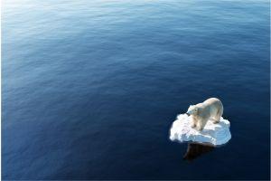 Cómo el cambio climático estaría influyendo en la decisión de tener hijos