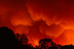 Bomberos controlan incendio forestal al sur de New Jersey que ha consumido 617 acres