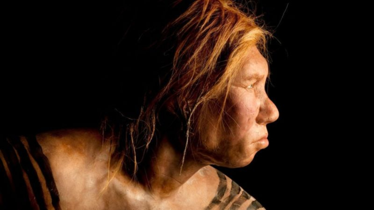 Descubre cómo la huella genética de los neandertales influye en nuestra vida diaria