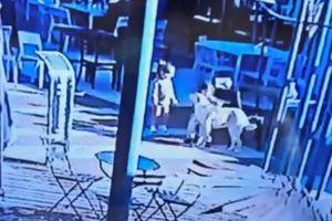 VIDEO: Se entrega hombre que mató de una patada a un perro en Argentina