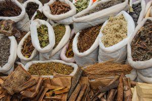 5 poderosas hierbas medicinales para disminuir el dolor de artritis